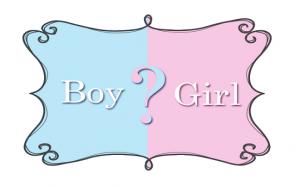 baby boy or girl