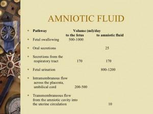 air ketuban, amniotic fluid
